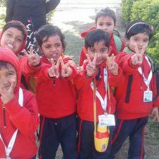 Picnic Global Kids