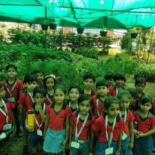Nursery Visit